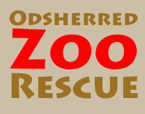 Odsherred Zoo Rescue